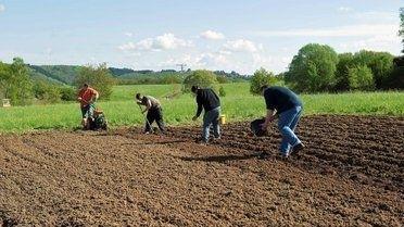 Bürgerservice Gartenarbeit